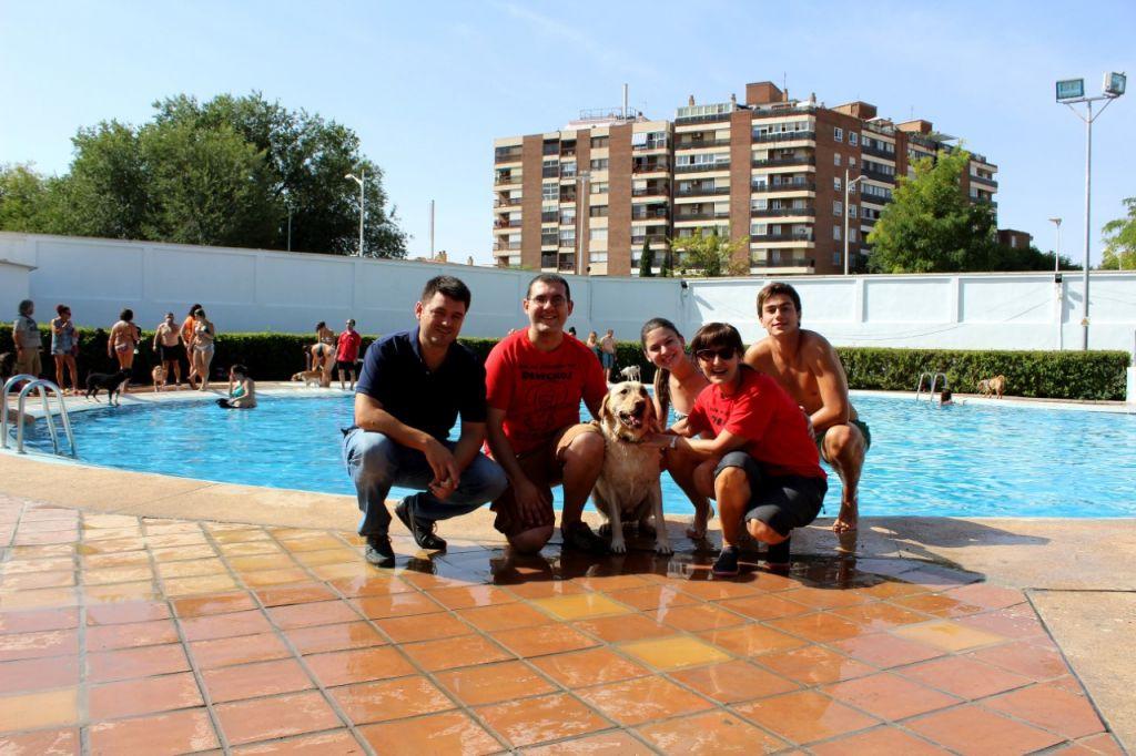 Hoy ba o con los perros en la piscina de albacete for Piscina municipal albacete